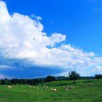 Etruria, panorama sulla natura