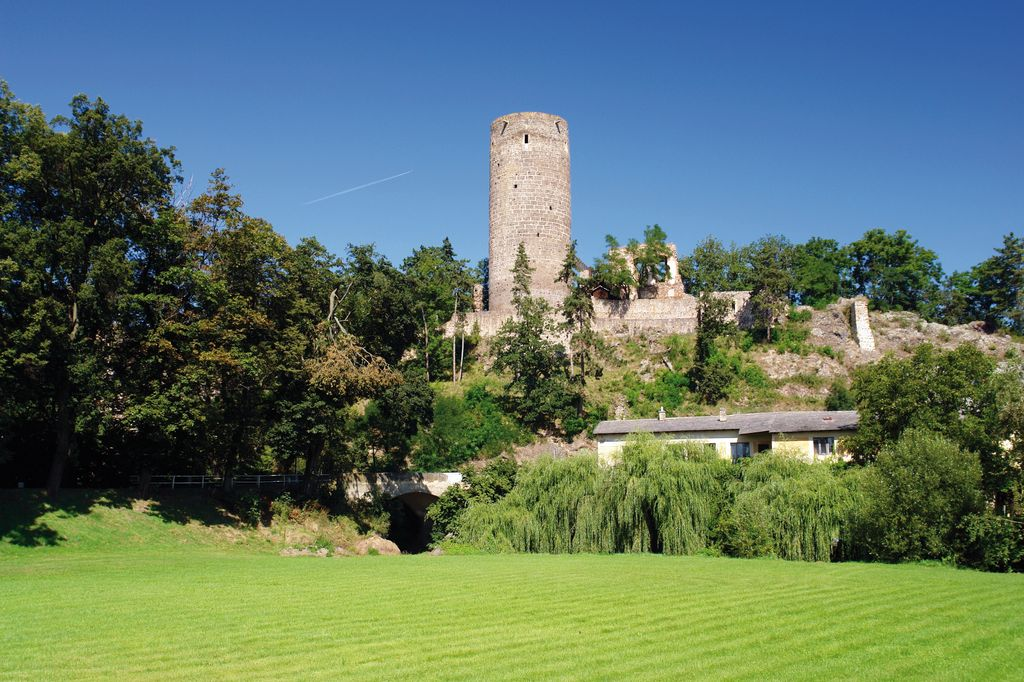 Ruins of a medieval castle Zebrak_157193615