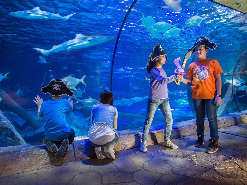 Gardaland SEA LIFE Aquarium domenica 7 febbraio si inizia a ...