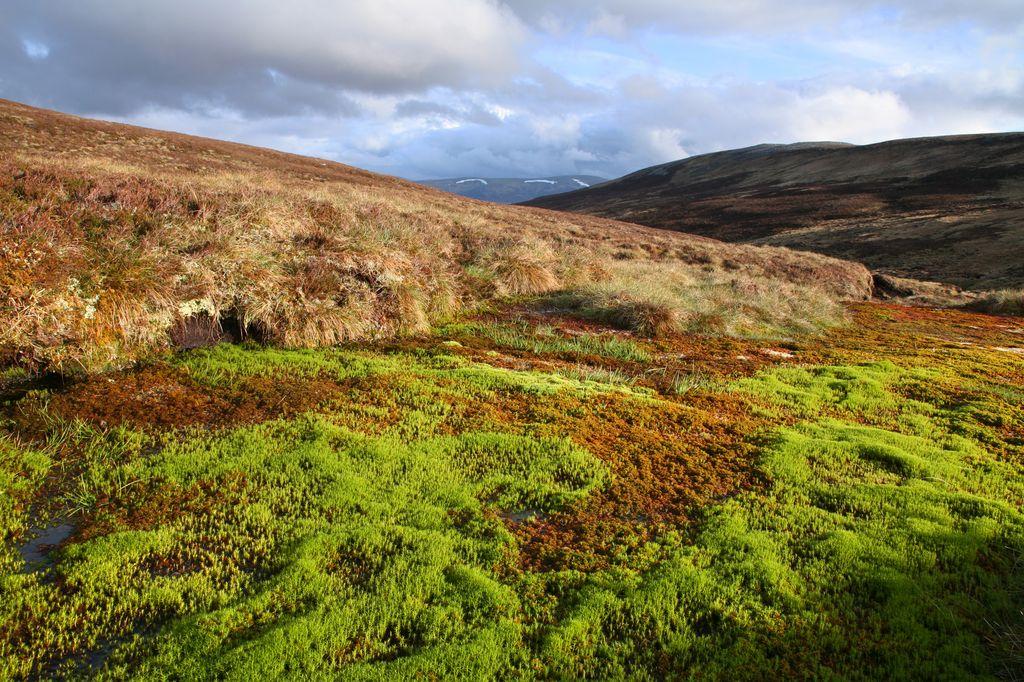 Cairngorm in Scozia del sud
