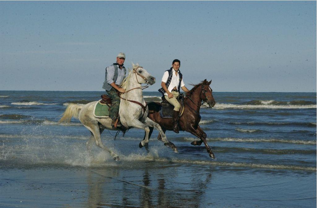 Cervia, a cavallo sulla spiaggia