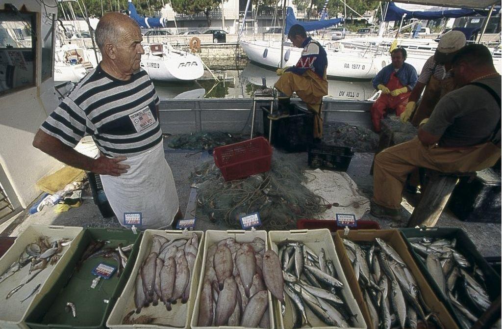 Cervia, il mercato del pesce