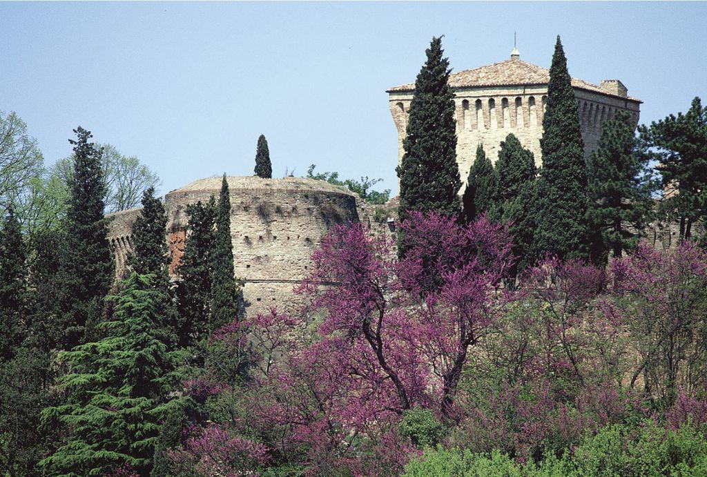 Cesena, particolare della Rocca