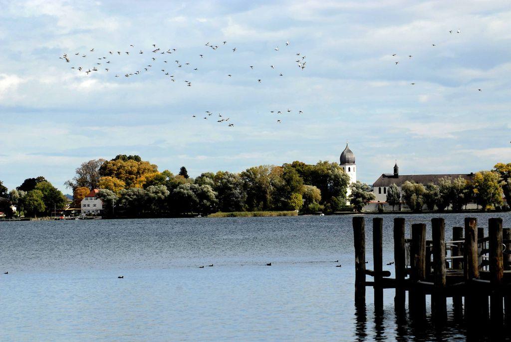 Panoramica isola sul lago