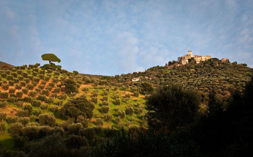 Capalbio, panorama che circonda il Castello