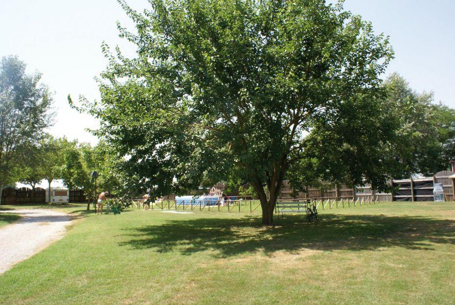 Area sosta Oasi Park Bosco Mesola (FE)