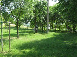 Area sosta Parco Fonte Salmagina - Staffolo (AN)