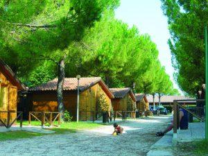 Camping Village Assisi - Assisi (PG)
