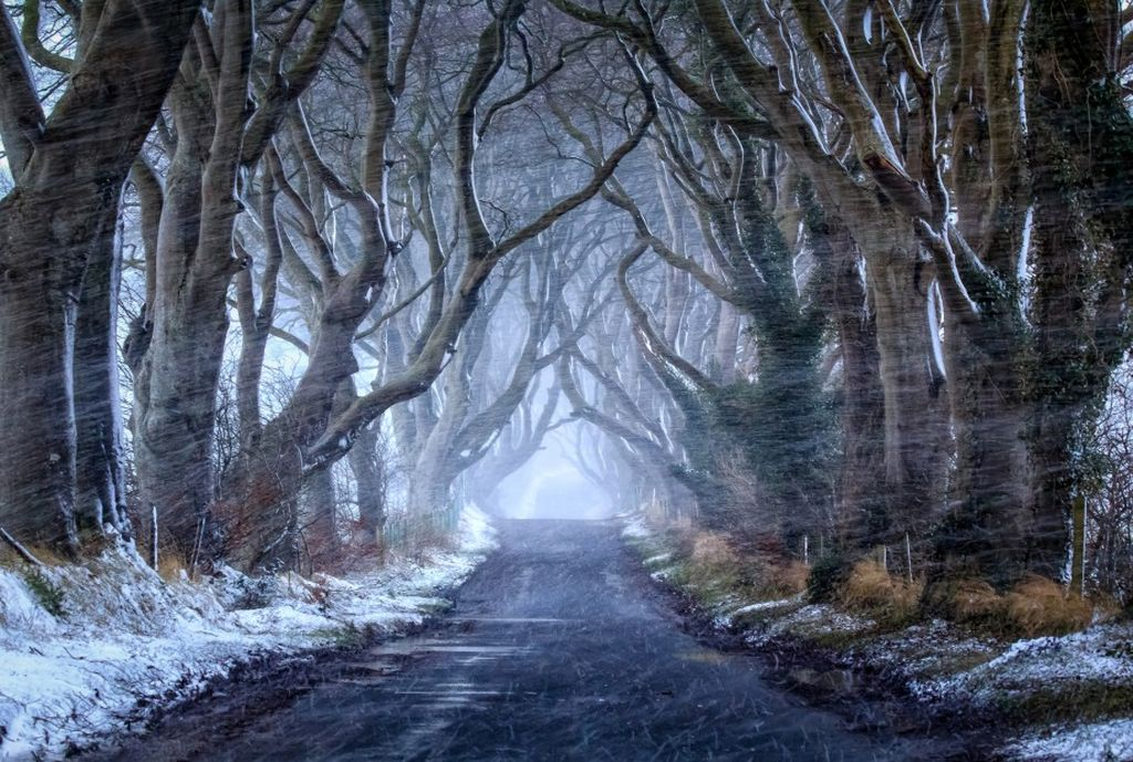 Irlanda d'inverno