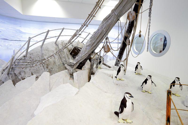 Museo Nazionale Antartide Trieste