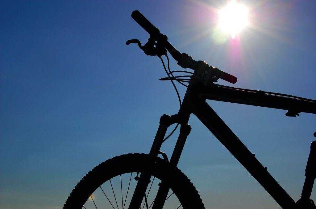 Bicicletta amica di viaggio