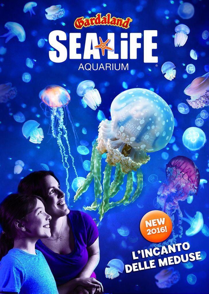 Gardaland SEA LIFE Aquarium 2016_ Incanto delle Meduse