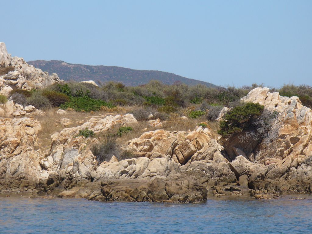 Asinara - scogliera
