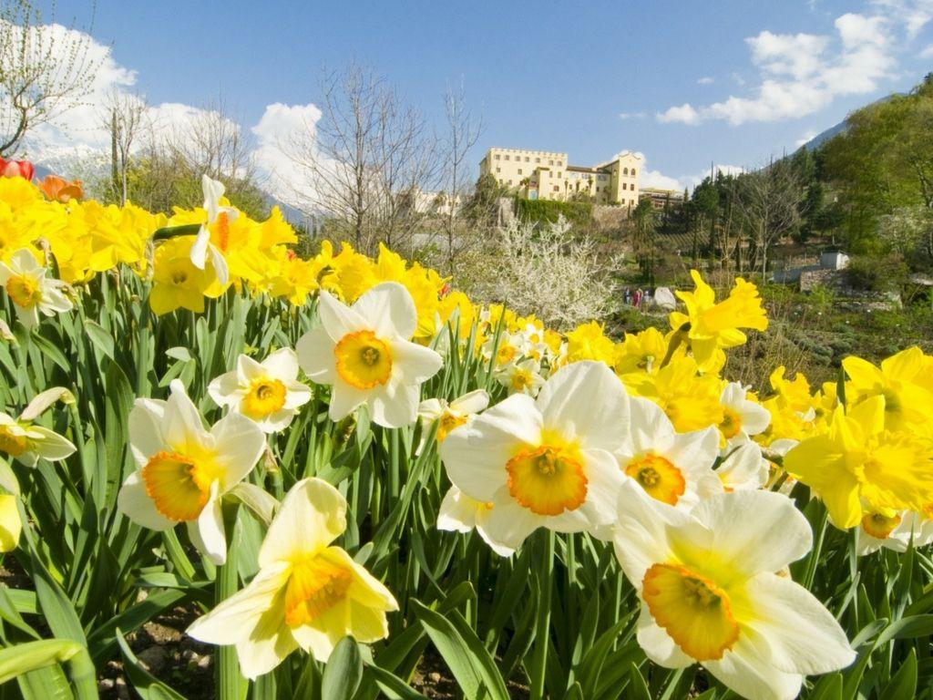 Giardini-di-Sissi