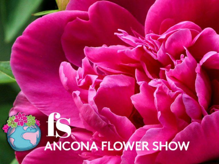 Ancona Flower Show, l'1 e 2 Aprile 2017 alla Mole Vanvitelliana