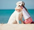 Villaggio Barricata vince il premio Pet Friendly 2017