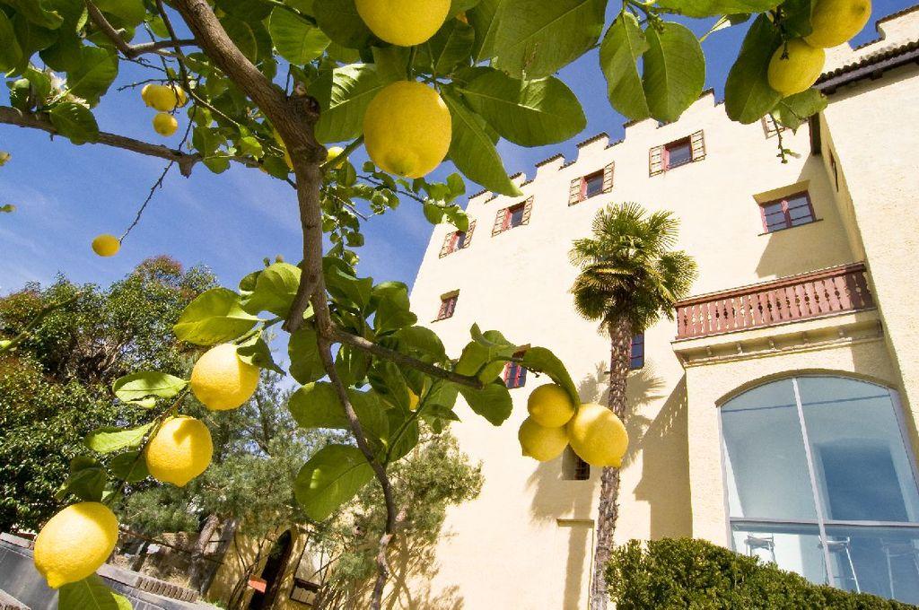 Limonaia Giardini di Sissi