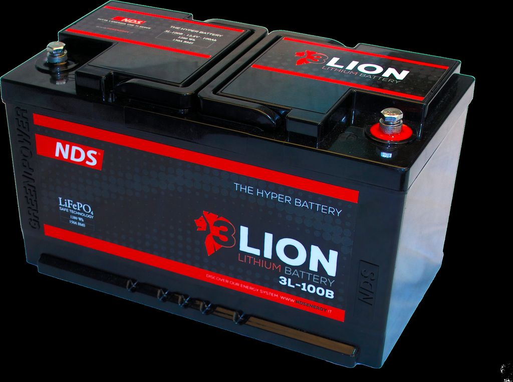 NDS 3lion