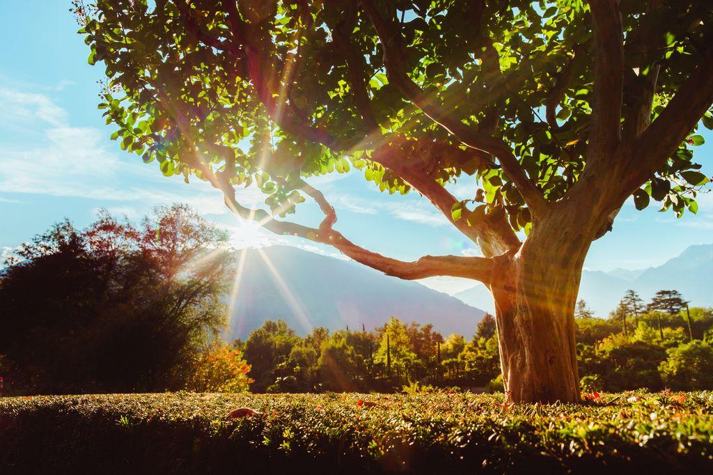 autunno ai Giardini di Sissi Merano