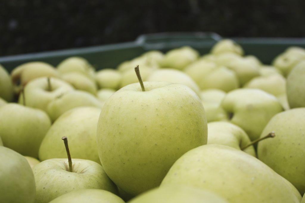 mele dell'Alto Adige