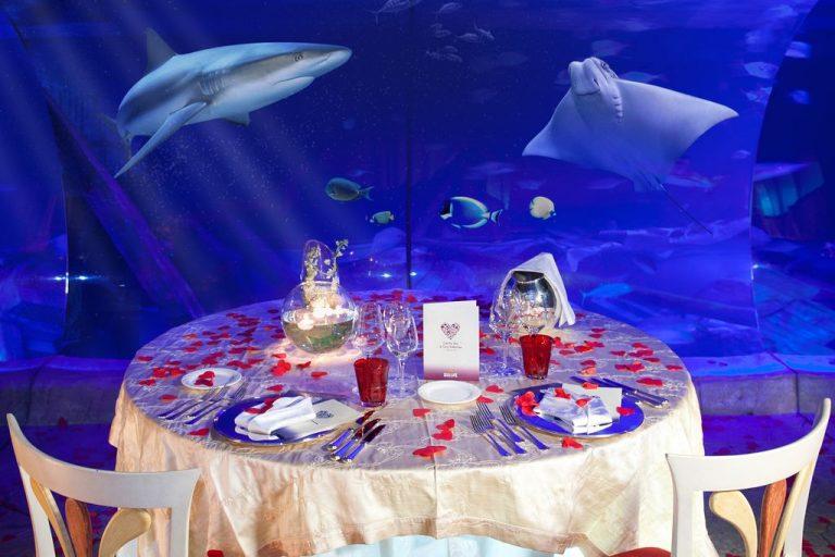 San Valentino a Gardaland SEA LIFE Aquarium