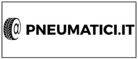pneumatici.it