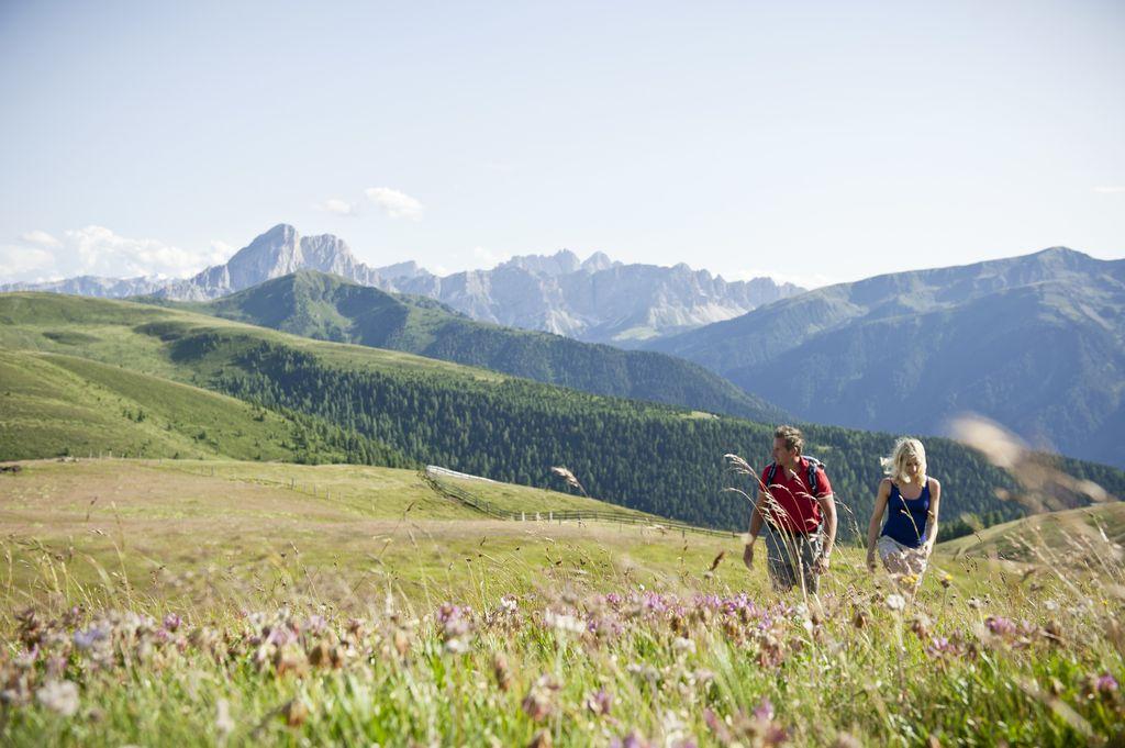 Alpe di Rodengo Luson ph IDM Alto Adige_Alex Filz