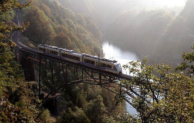 treno-foliage-vigezzina