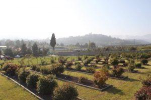 """Riapre l'Azienda Agrituristica """"Al Roseto"""", sotto forma di Agricampeggio"""