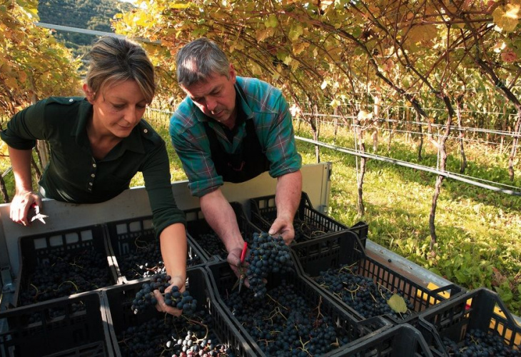 4′ Weekend, con DiVin Ottobre la Strada del Vino e dei Sapori dà il benvenuto all'autunno